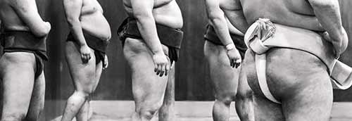 Sumo at a training stable