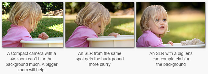 image showing how SLR cameras can blur the background