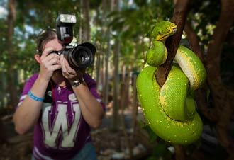 A workshop participant photographing a native green tree snake in a tree